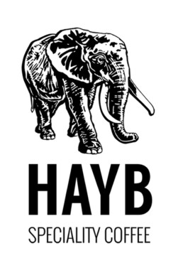 Logo Haybe specialty coffee