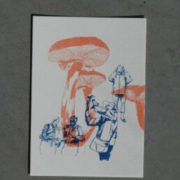 postcard Bertem Vanderbruggen